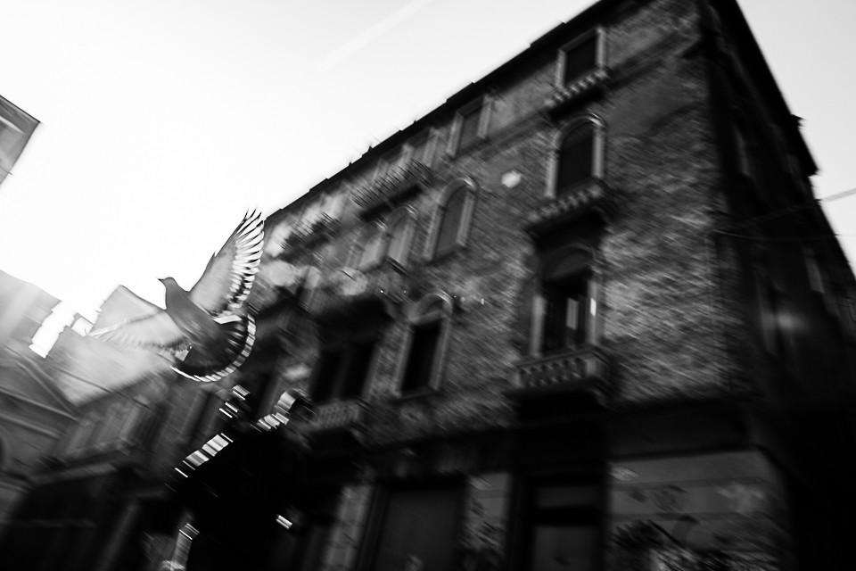 Corso di Street Photography Blog Fotoreporter Matrimonio