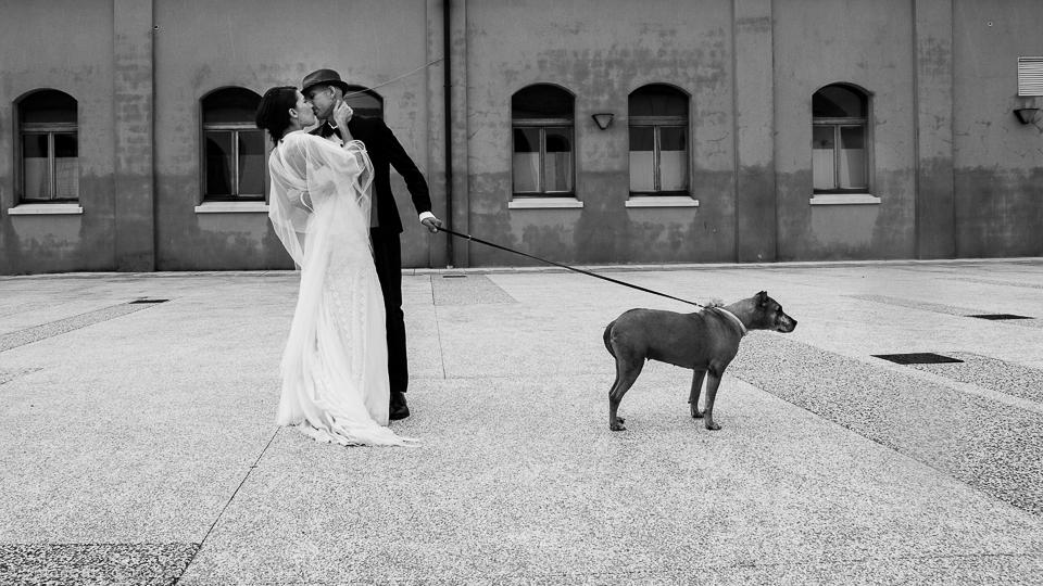 Quando i vostri affetti entrano nella fotografie del matrimonio. Blog Fotoreporter Matrimonio